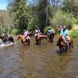 Bunyip Trail Horse Riders