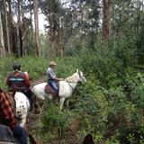 Warragul & District Trail Horse Riders Club Inc