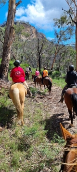 Central Tablelands Regional Trail Riders
