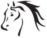 Ipswich & District Trail Horse Riders Club