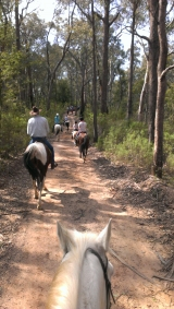 Flaggy Creek Trail Riding Club