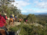 Melbourne Trail Horse Riders Club