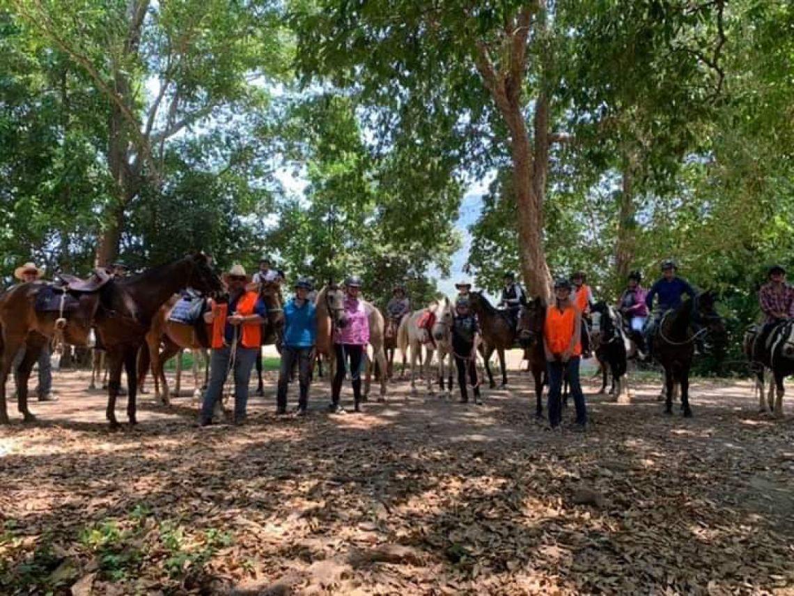 Cairns & District Trail Horse Club Inc - Trail Horse Training Day