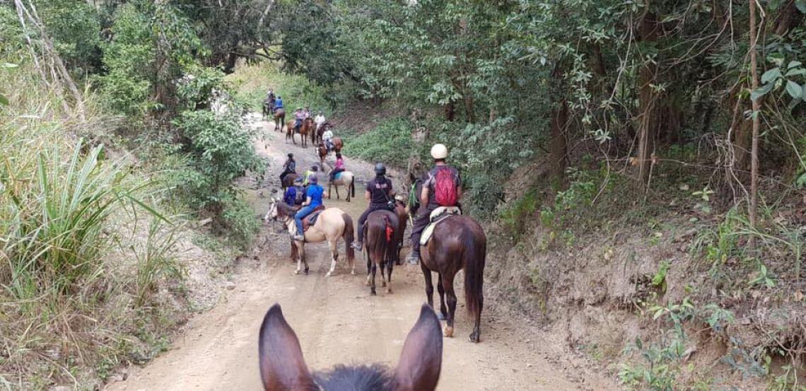 FNQ Trail Horse Club Inc