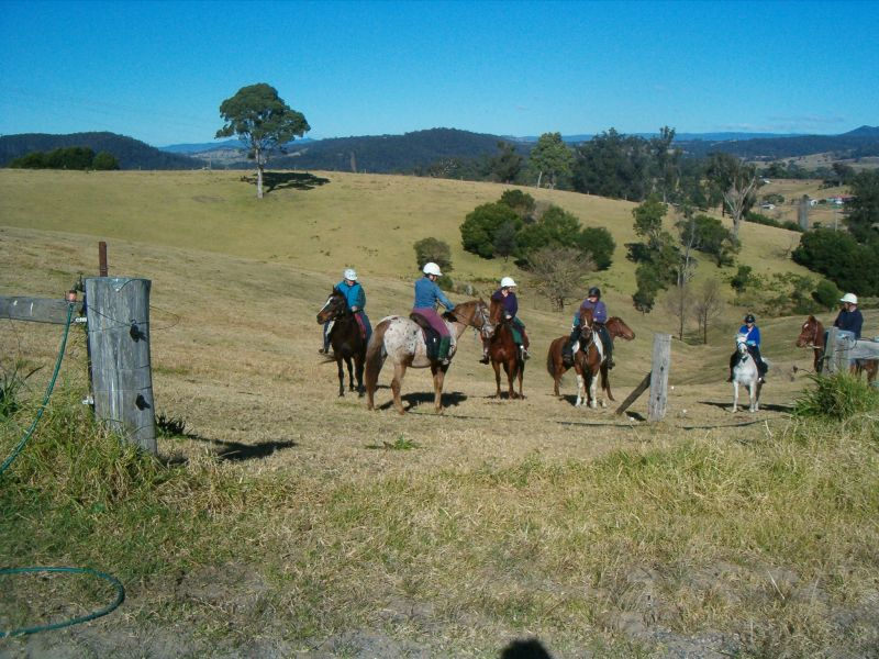 Horses Birthday ride from Pauline s
