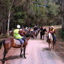 "RCTHRC ""Pig & Whistle"" pub ride 2012"