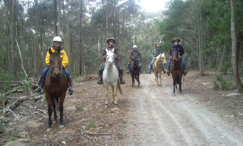 This is a beautiful section of the BNT riding from the Cupacumbalong woolshed BNT camp 20km to the next camp site at Caloola farm.  We stayed in cottages at Caloola.  Us wimps can't take the frost.  This photo is taken on Sunshine Road.
