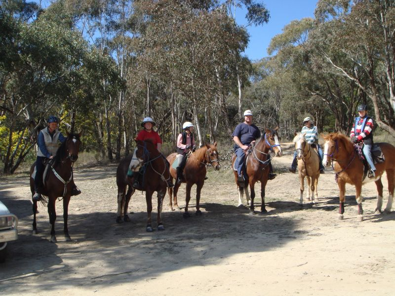 We had a great ride in the Kinross Forest with 8 riders for a few hours of ambling in the pines and natural forest.