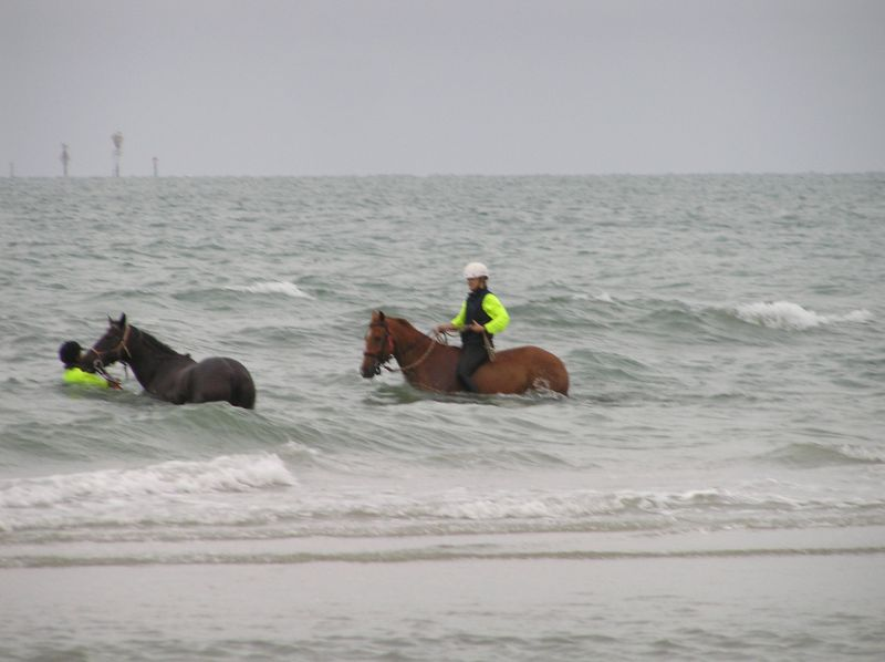 not the best weather for a beach ride - cant get on....