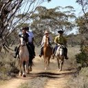mallee riding.