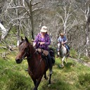 Howitt Plains High Country Ride