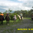 Joan on Normie, Beth on Oliver, Tory on Stormy, Kellie on Dream Girl and Chaney on Bailey ready to go on a Trail ride
