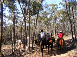 Castlemaine Ride June 2007