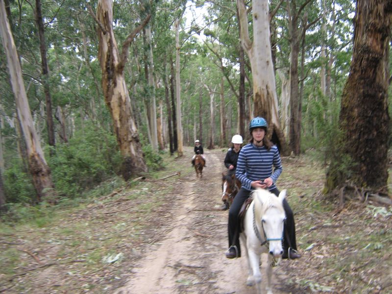 Zoe, Jaimi and Laura on Cowley track riding Legs, Copper and Corona