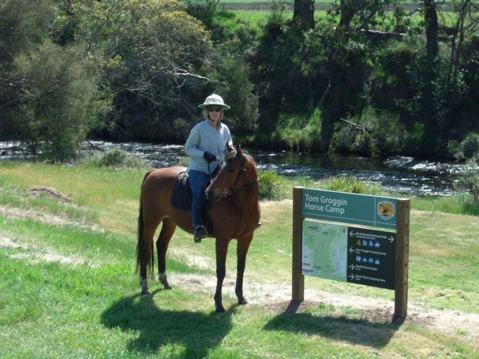 TF Horse Camp